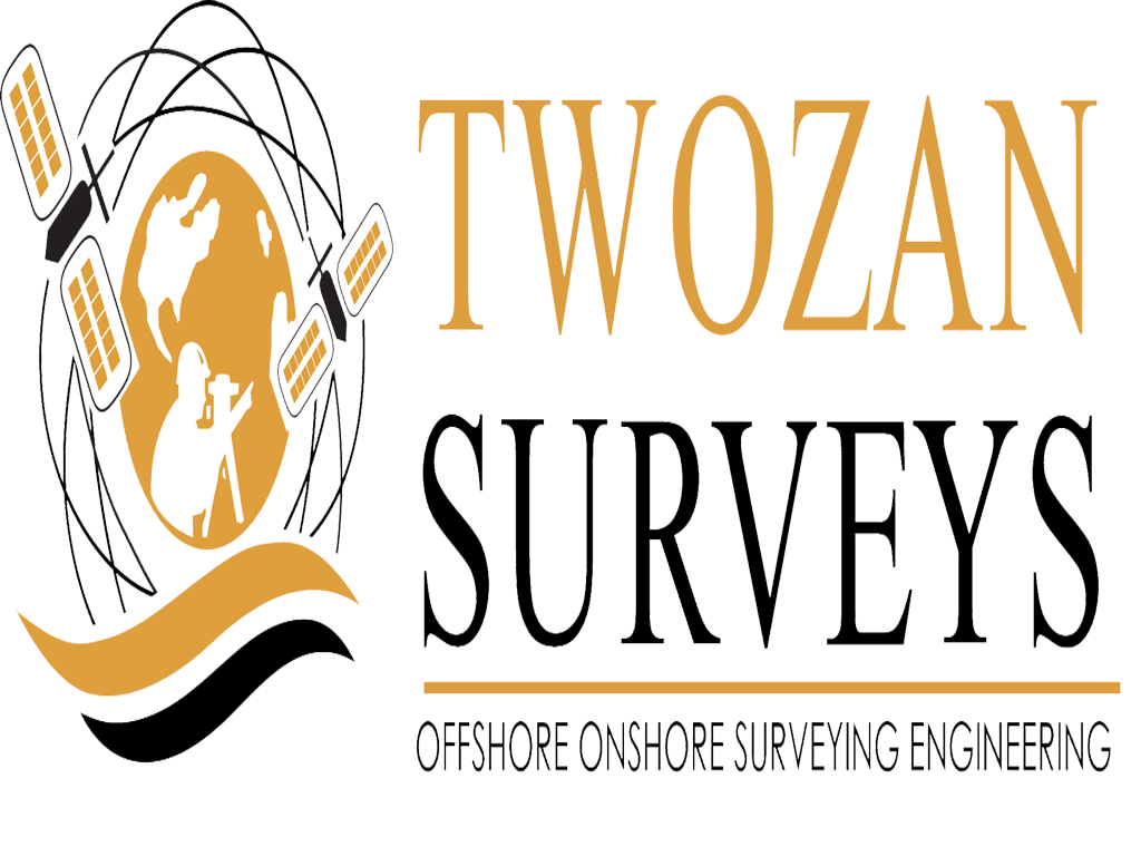 Twozan Surveys